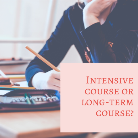 French course options: Intensive course or long-term course?